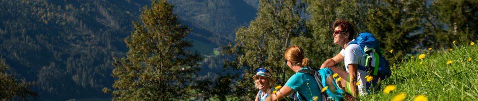 Wildkogel-Arena:  Veruit de beste ervaringen in de bergen voor gezinnen